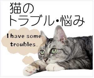 猫のトラブル・悩み