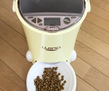 猫のお留守番時に使える給餌器