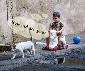 猫の年齢を人間に換算すると何歳か