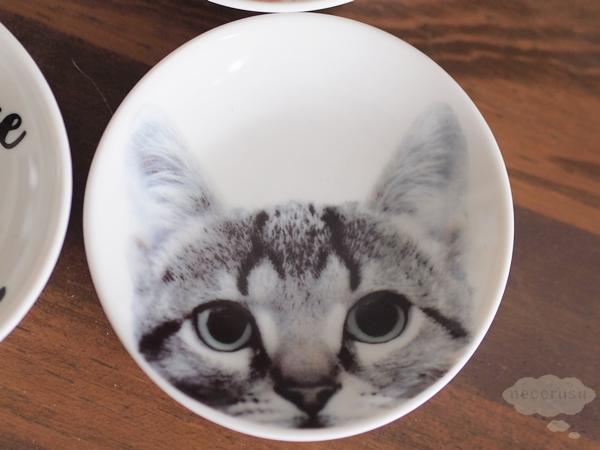 豆皿 猫フォト サバトラ