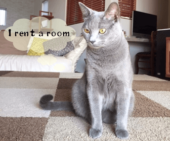 ペット可・猫可賃貸を探す方法