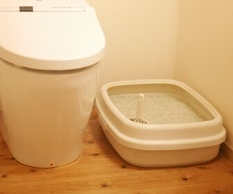 掃除のしやすい猫トイレ