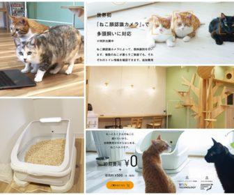 猫のおしっこ管理ができる猫トイレ「toletta(トレッタ)」を開発している株式会社ハチたま