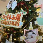 ねこ休み展in横浜みなとみらいに行ってきました!