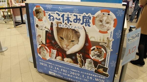 ねこ休み展in横浜みなとみらいの入り口