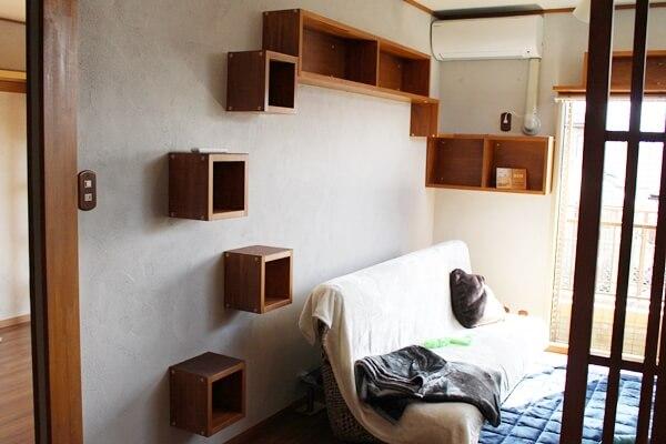 サノスケ不動産の猫のための賃貸住宅、壁面のキャットステップ