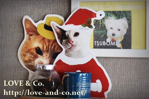 一般社団法人LOVE & Co.