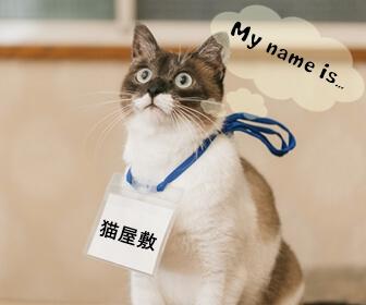 猫のつく苗字
