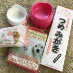 100円ショップで買える猫用グッズ【お皿、ペットシーツ、爪とぎシートなど】