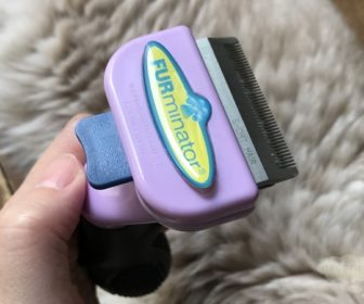 ファーミネーター FURminatorを短毛の猫に使用