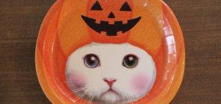 100円ショップで買える猫のハロウィングッズ&猫の仮装アイテム
