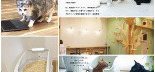スマート猫トイレ「toletta(トレッタ)」の開発会社ハチたまさん訪問してきました!