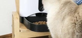 カリカリマシーンSP数か月愛用中の口コミと猫の様子をお伝えします!